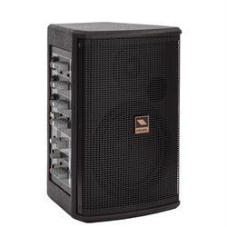 "PROEL PORTABLE PA SYSTEM - 6.5"" 2-way speaker, 5-Input Mixer"