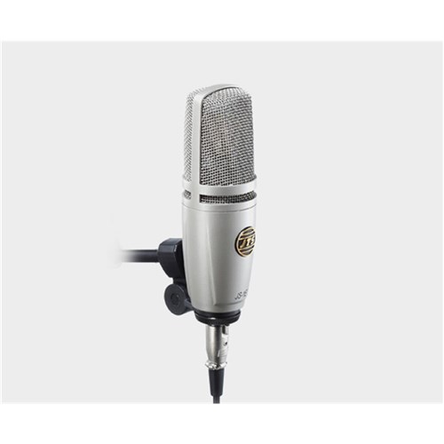 Large diaphragm studio mic with basic mounting clip