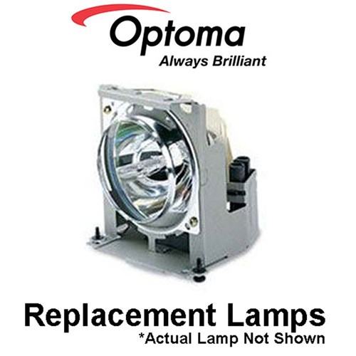 Replacement Lamp X501